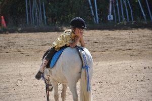 Quel cheval pour un cavalier débutant ?
