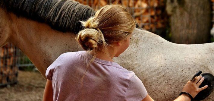 Femme qui s'occupe d'un cheval